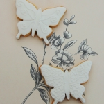 biscuit-butterflies-large