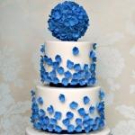 Blue Hydrangeas WC 3