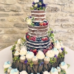 Naked Cake & Cupcakes 1a