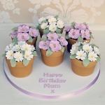 Flowerpots 2a