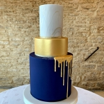 Navy and Gold Drip WC 1 Logo